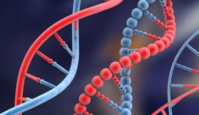 ¿El cáncer es hereditario?