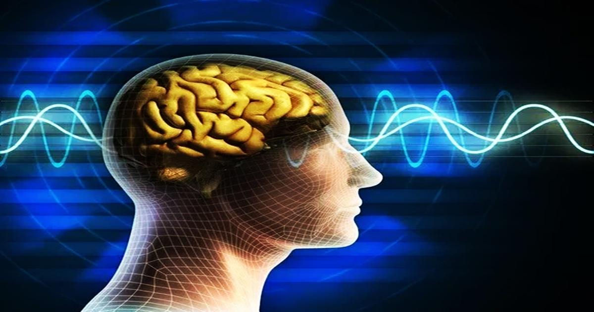 mitos del cerebro 2