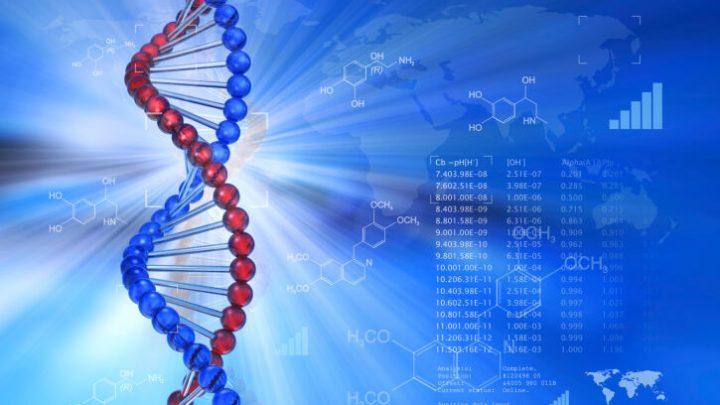 ¿Qué es la ingeniería genética?