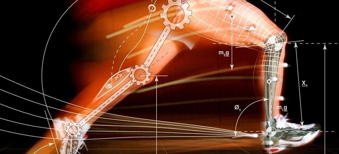 La biomecánica interdisciplinaria: el futuro de los órganos