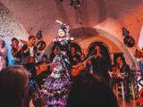 Orígenes del Flamenco